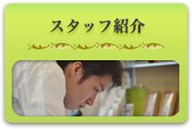 staff_n